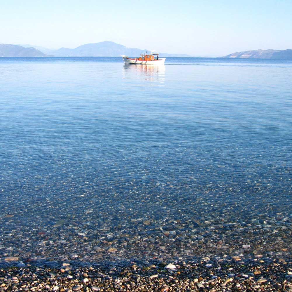Island Evia Boutique Apartments - Pefki, Artemision, North Evia, Greece